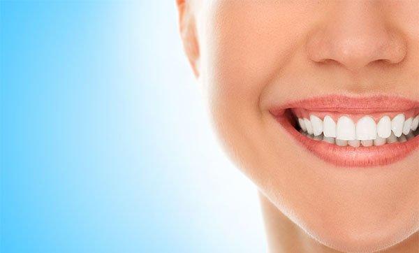 dental check-ups in port macquarie